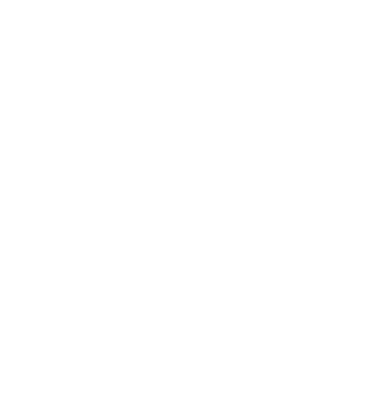 Lutz Building Enterprises